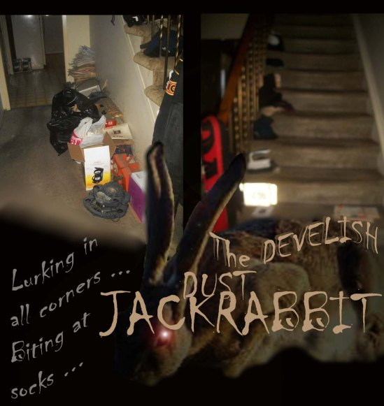 DeadlyDustJackRabbit