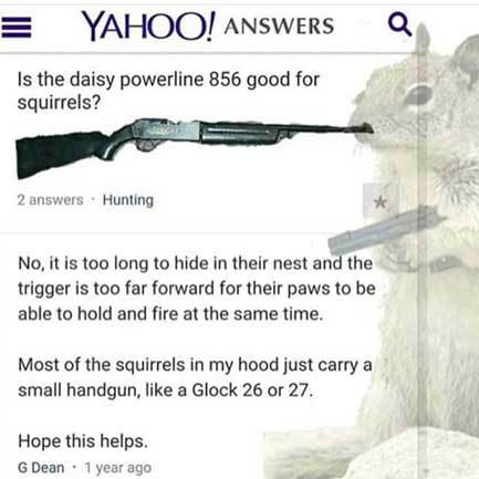 squirrels-and-guns-wisco